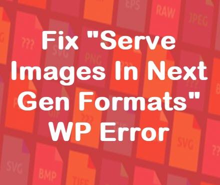 Serve Images in Next Gen Formats